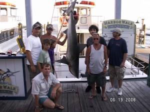 Destin shark fishing destin fishing charters for Destin shark fishing